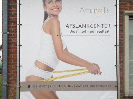 Spandoeken – Amaryllis