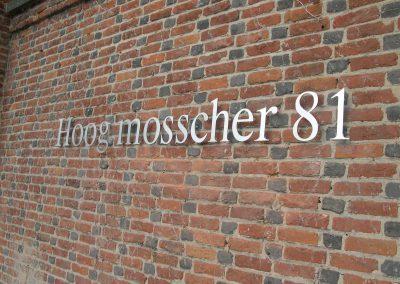 3D letters Hoog mosscher